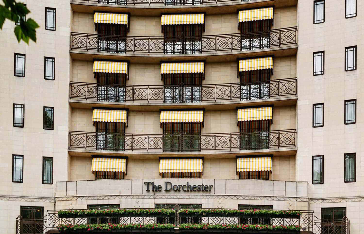 Deans Classic Dutch Canopy for The Dorchester